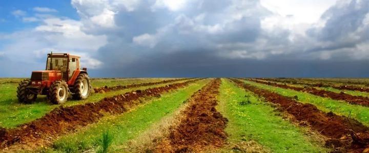 守护好粮食生产的命根子  坚持最严格的耕地保护制度(专题深思)