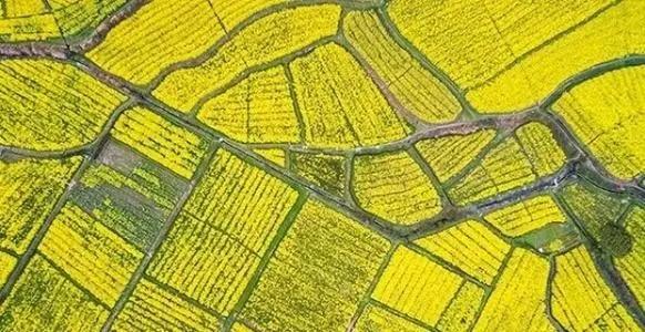 农业农村部关于开展全国休闲农业重点县建设的通知
