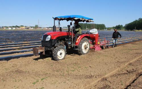 引导小农户走上现代路—— 农业社会化服务组织超九十万家