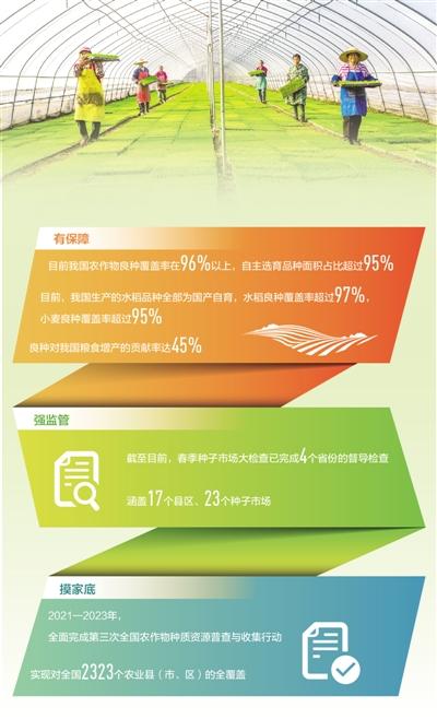 全国农作物良种覆盖率稳定在96%以上  播下好种子 丰收有底气(田间追踪高质量·春耕探行)