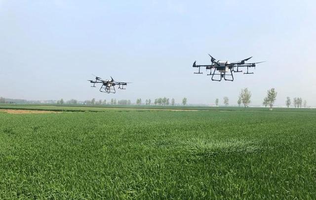 河南省农业村厅关于印发《2021年全省小麦后期管理技术指导意见》的通知
