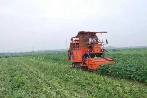 宁波市关于征集2021-2023年农机购置补贴调整建议的通知