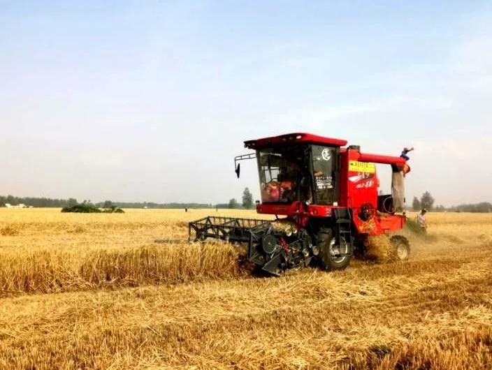 我国政策性粮食收购16年带动粮农增收两千亿元