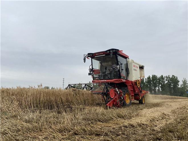 """唐仁健在2021年全国""""三夏""""小麦机收暨粮食作物机收减损工作视频会议上的讲话"""
