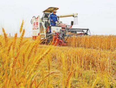 中央今年安排湖北省农机补贴6.86亿元