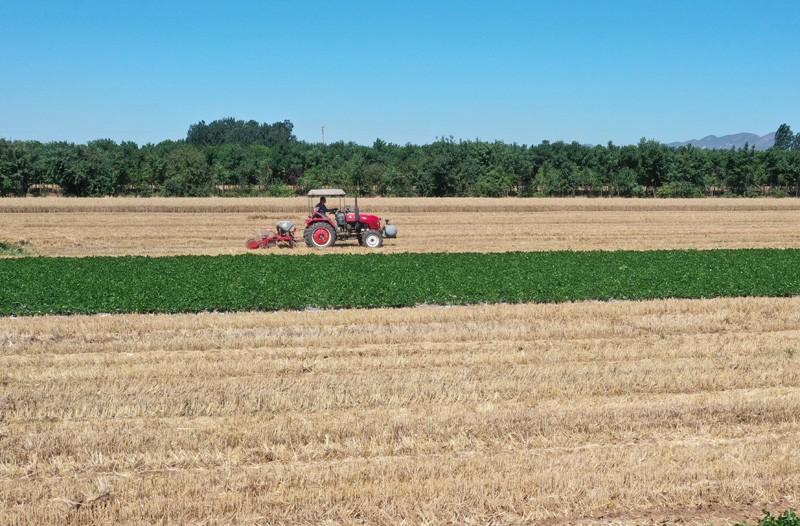 推进农业发展全面绿色转型