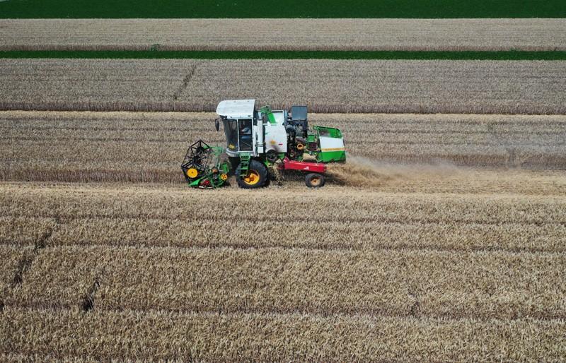 国家统计局:实现全年粮食丰收条件较好
